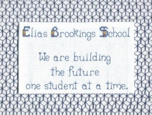 Cube Stitch netting behind Brookings embroidery