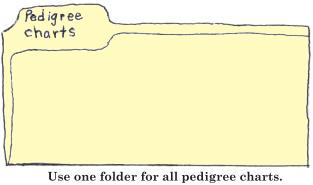 Use one folder for all pedigree charts