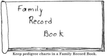 Keep pedigree charts in a Family Record Book.